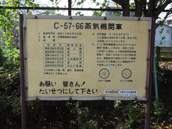 C57_66_130907_9
