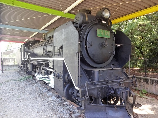 D51-89-170804